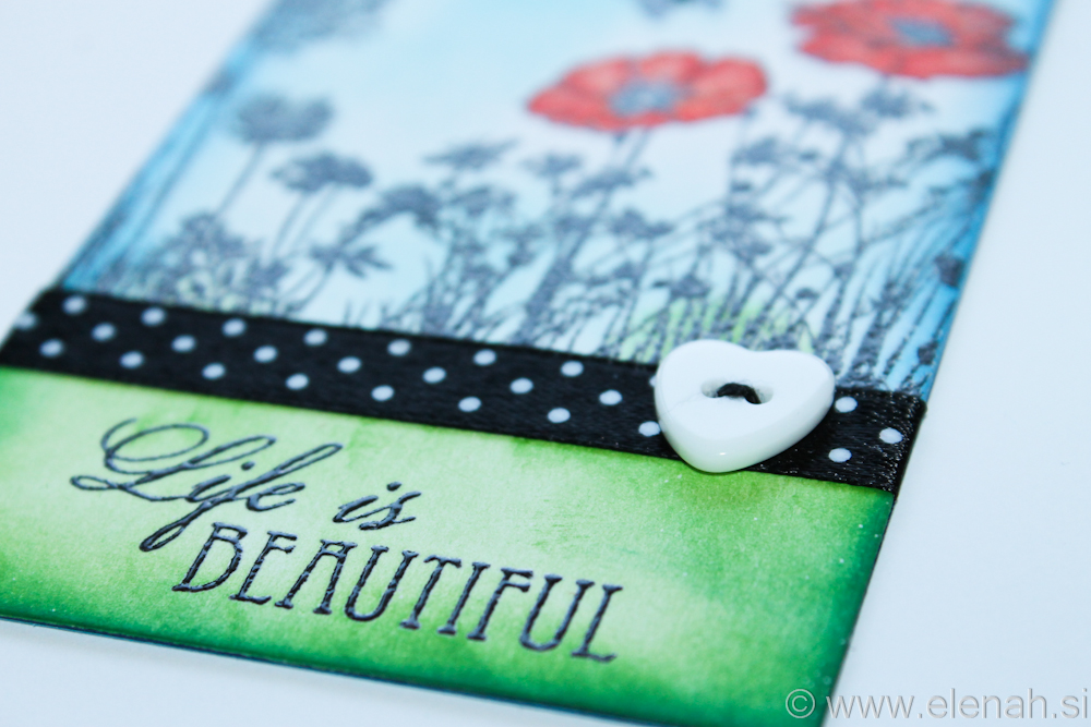 Day 110 Life is beautiful book tag 7
