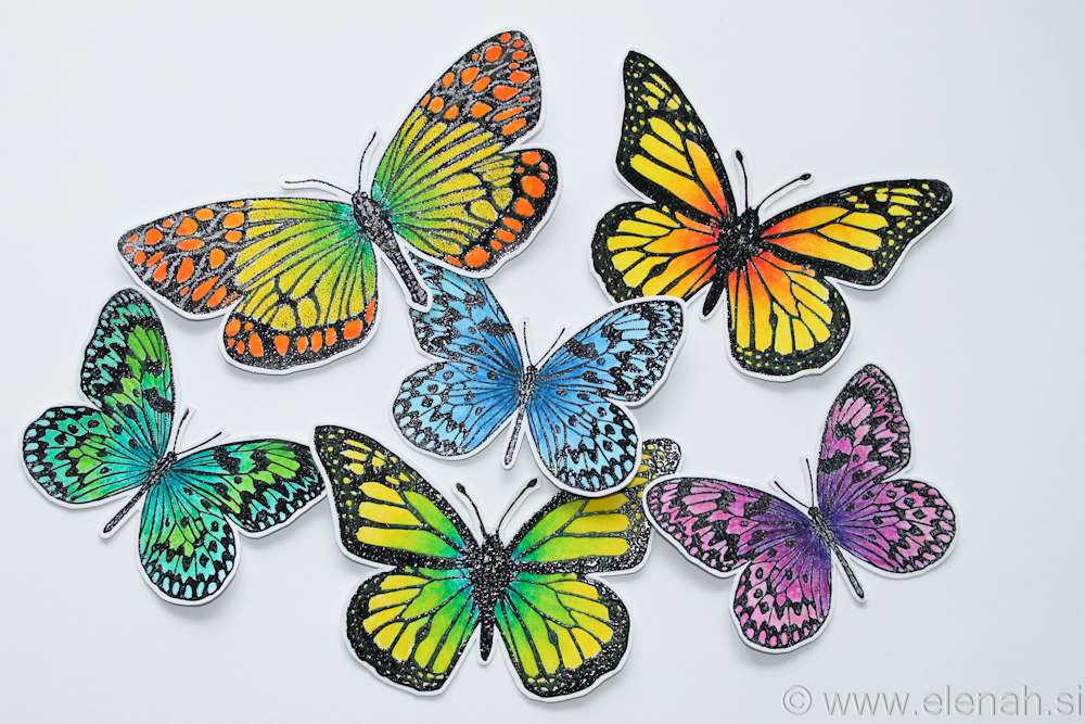 Day 358 butterfly bright colors 1