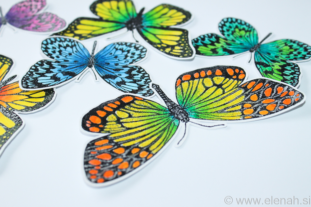 Day 358 butterfly bright colors 2